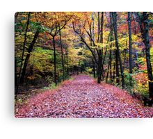 Autumn Stroll Canvas Print