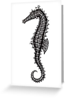 Seahorse black and white pen ink drawing by Vitaliy Gonikman
