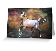Wild horse. Greeting Card