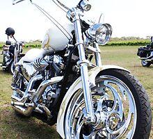 Harley Davidson by Daniel Sherwood