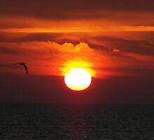 Southcoast UK Sunset by grubb1980