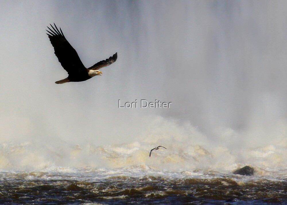 Out of the Mist by Lori Deiter