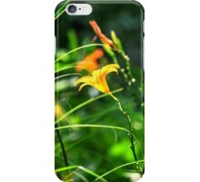 GREEN ORANGE RED YELLOW FLOWERS iPhone Case/Skin