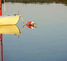 Beautiful Reflection by Jeff Palm Photography
