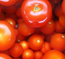 Tomato Tomato Sticker