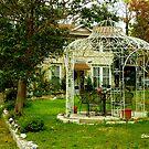 A Garden in Texas by Shiva77