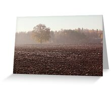 Lonely oak in frosty day Greeting Card