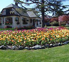 A Garden Home, Victoria by Jann Ashworth