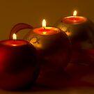A Quiet December Evening by TeresaB