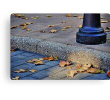 Last Gasp of Autumn Canvas Print