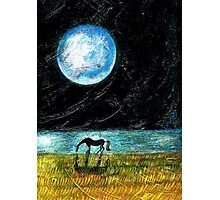 Fool Moon and a Horse Photographic Print