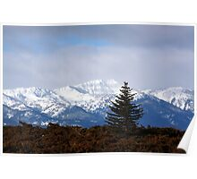 The Blue Mountians Poster
