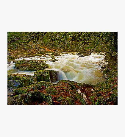 Fun On The South Santiam Photographic Print