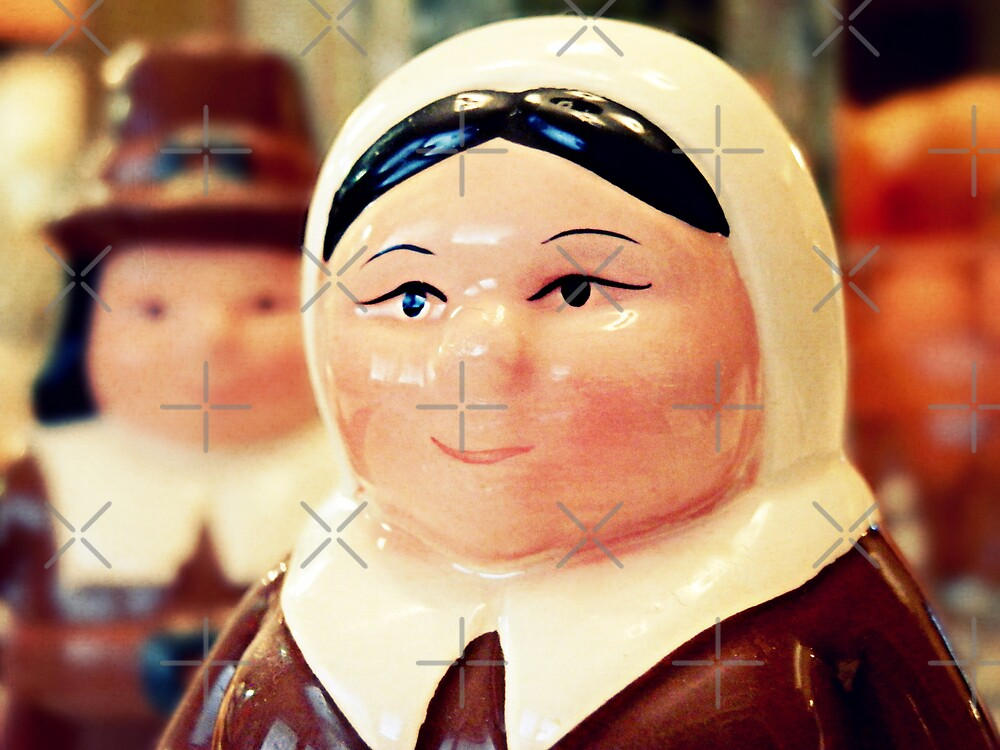 The Pilgrims by Scott Mitchell