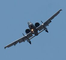 FT AF 78-0597 A-10 Thunderbolt II Head On by Henry Plumley