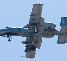 OT AF 80-0242 A-10 Thunderbolt II On Approach by Henry Plumley