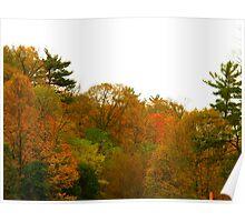 Autumn BBQ Poster