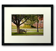 Forgotten Bench  Framed Print