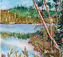 Landscape in the Northern Quebec by ivDAnu