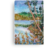 Landscape in the Northern Quebec Canvas Print