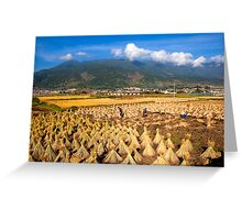 High Altitude Farming Greeting Card