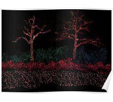 Christmas lights for Azalea flowers Poster