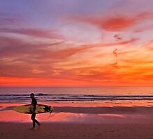 november surfer by terezadelpilar~ art & architecture