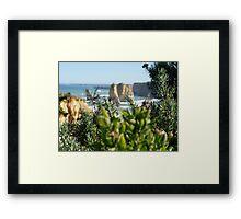12 Apostles Glimpse, Australia Framed Print