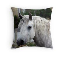 Grey Connemara Pony Throw Pillow