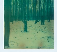 snow by maticki