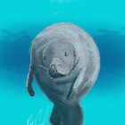 Manatee - Sketched on an iPad formatted for iPhone Case by Ray Cassel