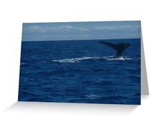 Hunting Dive Greeting Card