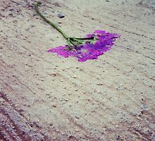 Squashed flower by Taytoo