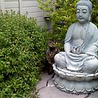 Buddha Cat by Melissa DeBusk