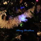 Merry Christmas in Blue by aussiebushstick