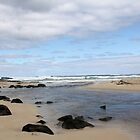 Margaret River Beach by Susan Moss