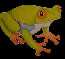 Red eyed tree frog by Nephrurus1