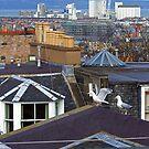 Edinburgh Rooftops by Tom Gomez