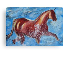 The Horse and the Sea Canvas Print