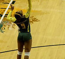 Serving Match Point by Laddie Halupa