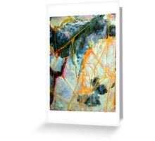 Web of the Golden orb Greeting Card
