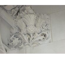 Thistle In Plaster Detail, Supreme Court, London Photographic Print