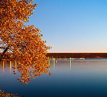 A Morning In Fall by John  De Bord Photography