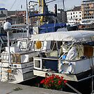 Yachts in Antwerp dock by Gilberte
