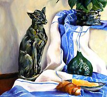 The Cat and the Cloth by JolanteHesse