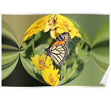 Monarch Paper Weight  Poster