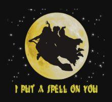 Hocus Pocus (I Put A Spell On You) by Joe Bolingbroke