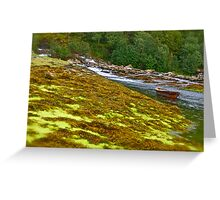 Nordland landscape . Norway . 2011 . by Brown Sugar . Greeting Card