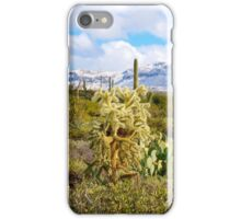 Winter Cholla iPhone Case/Skin