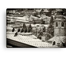 Crows on a winter day Canvas Print